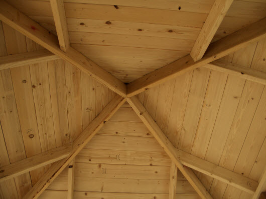 gardenroom2ceiling